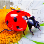 Insect Jigsaw Puzzles Game – For Kids & Adults 🐞 Mod Apk 25.0