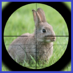 Rabbit Hunter Mod Apk 3.5
