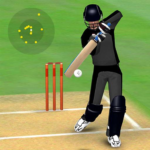 Smashing Cricket – a cricket game like none other Mod Apk 3.0.8