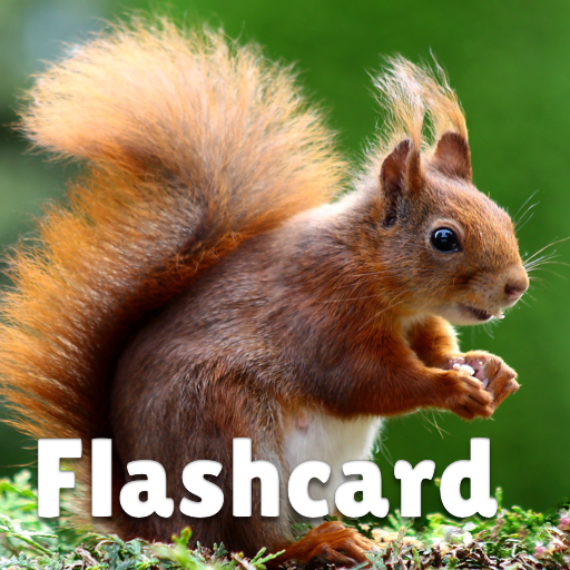 Animal flashcard & sounds for kids & toddlers Mod Apk 2020.24