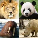 Animals Quiz – Learn All Mammals and Dinosaurs! Mod Apk 3.2.0